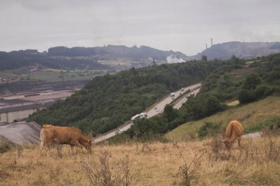 Asturias; región agropolitana.